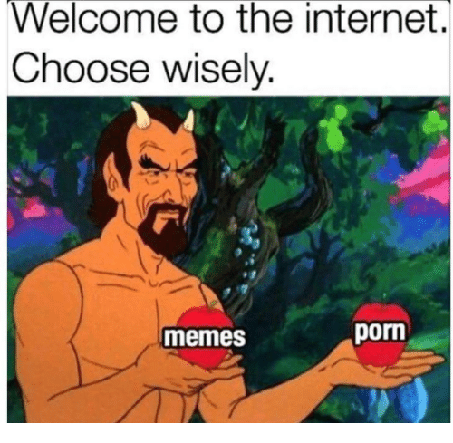 welcome-to-the-internet-choose-wiselv-memes-porn-38588564